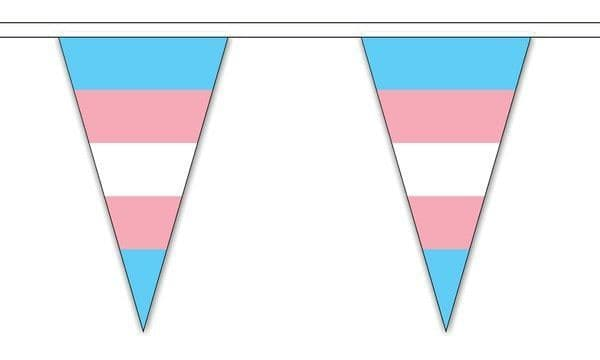 Transgender Triangle Bunting (5m) - 12 Flags