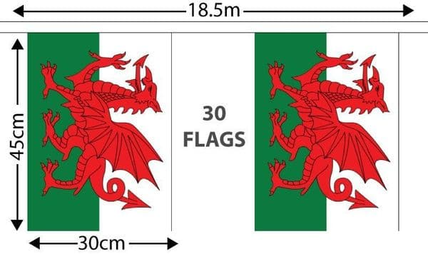 Wales GIANT Bunting (18.25m)