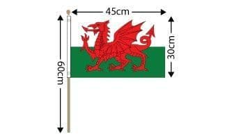 Wales Large Hand Flag (18