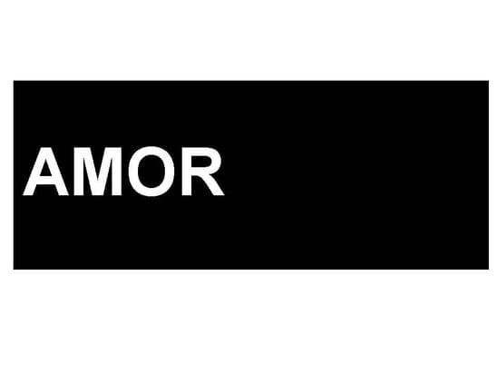 Amor Motorcycle Transfers
