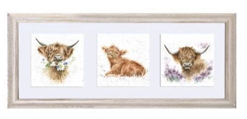 'A Trio of Highland Cows' Framed - FT010