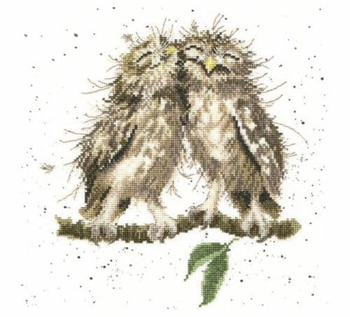 'Birds of a Feather' Owl Cross Stitch Kit - XHD36