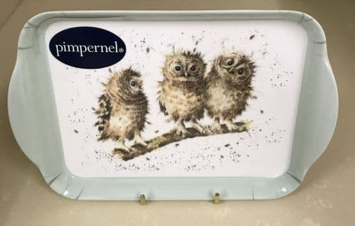 'Owl' Scatter Tray