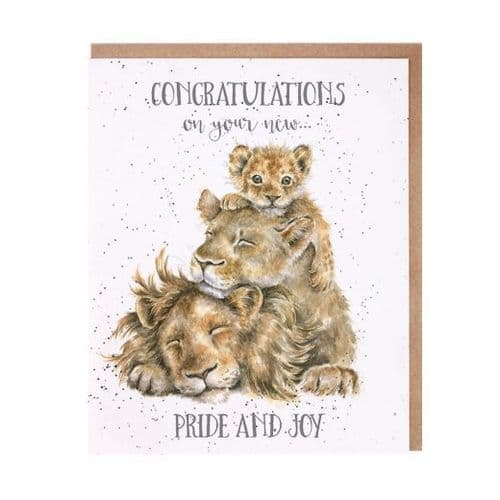 'Pride and Joy' New Baby Card - OC093