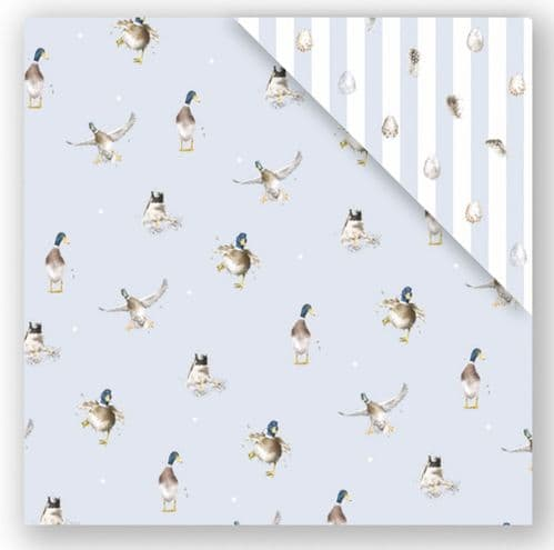 Duck 'The Crash Landing' Double Sided Gift Wrap - GW012
