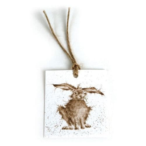 Hare Brained Gift Tag
