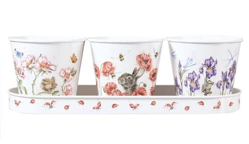 Herb Pots and Tray Floral