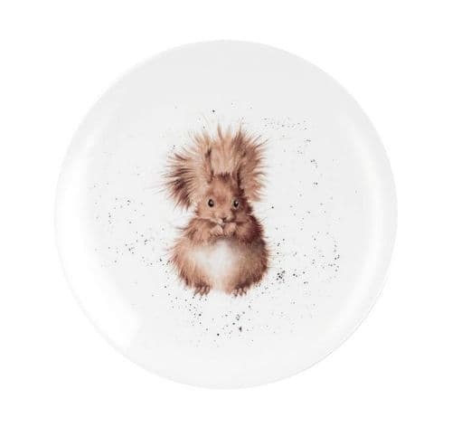 Squirrel Lunch Plate