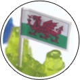 Welsh Flag 25mm - 20mtrs