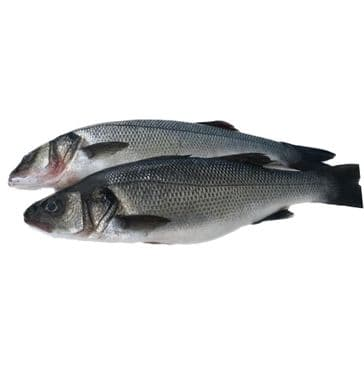 Seabass - Whole - Farmed