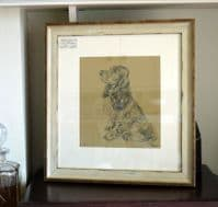 Cocker Spaniel in profile sitting  1930's print by Lucy Dawson  - Sp D13