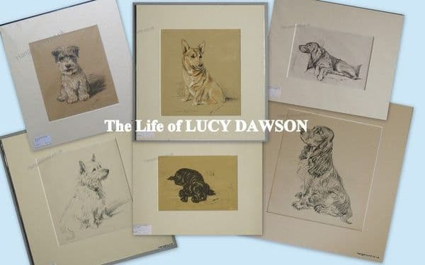 The Life of Lucy Dawson