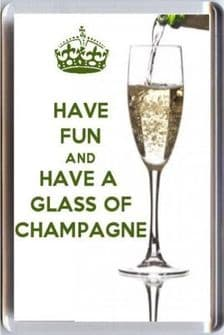 HAVE FUN and DRINK  CHAMPAGNE Fridge Magnet UNIQUE Champagne Lover's Christmas Gift