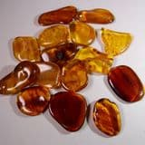 AMBER (POLISHED PIECE) -  40 million years old  -  Baltic