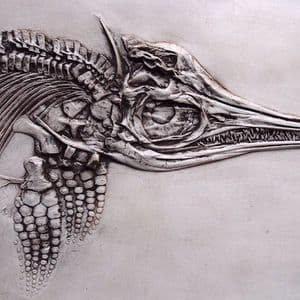 REPLICA (IN POLYURETHANE FOAM) OF A MAGNIFICENT COMPLETE ICHTHYOSAUR