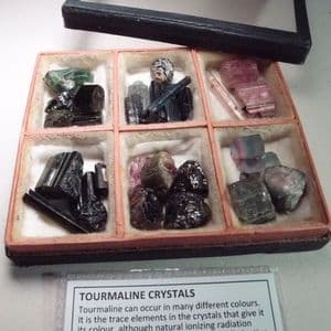 TOURMALINE CRYSTALS IN VINTAGE GLASS DISPLAY BOX
